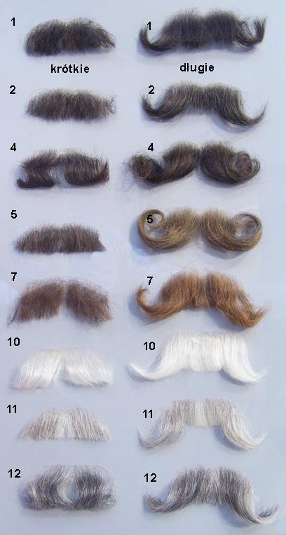 Sztuczne wąsy długie - sumiaste